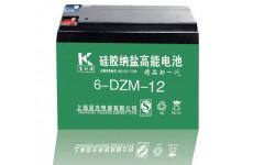硅胶纳盐高能电池6-DZM-45